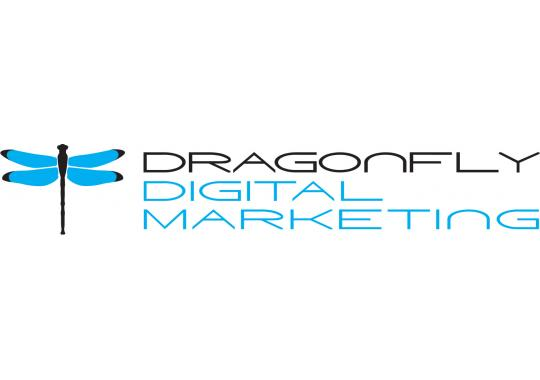 Best Baltimore SEO Company Logo: Dragonfly Digital Marketing