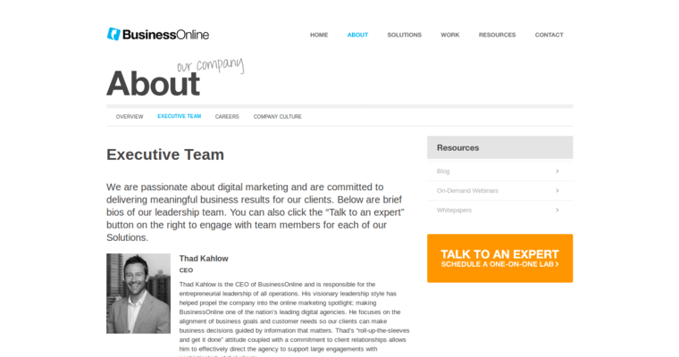 Team Page of Top Web Design Firms in California: Business Online