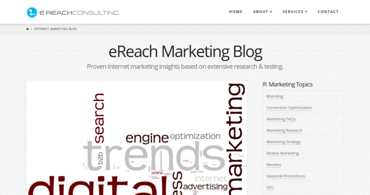Blog Page of Top Web Design Firms in California: eReach Consulting