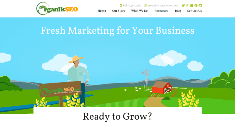 Home Page of Top Web Design Firms in California: Organik SEO