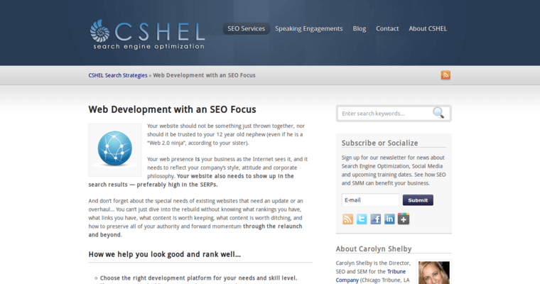 Development Page of Top Web Design Firms in Illinois: Cshel