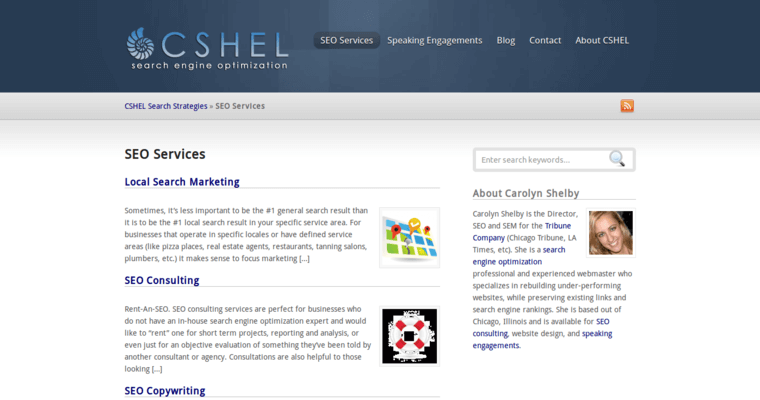 Service Page of Top Web Design Firms in Illinois: Cshel